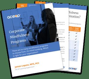 AceUp Mindfulness Whitepaper mockup-1